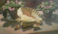 Картина:Раковина морская